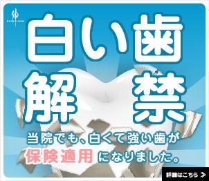 ハイブリッドセラミック|お知らせ|高木歯科医院|西早稲田にある相談できる歯医者さん